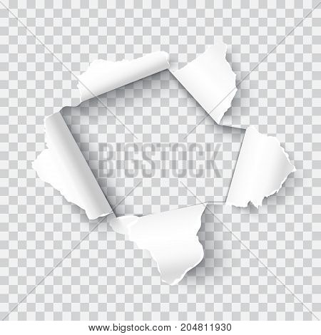 Vector realistic hole in the paper page with soft shadow isolated on transparent background