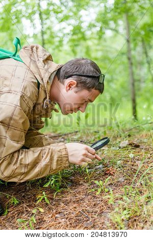 Picture of man with magnifying glass examines plants in woods during day