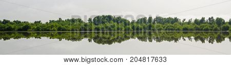 Panorama of perfect reflection of trees in central wetlands of the Gambia, West Africa.