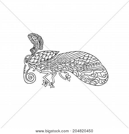 Black and wite moth with ethnic floral ornaments for adult coloring book. Zentagle pattern. Vector doodle illustration. Night-fly moth
