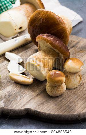 Boletus Edulis, Cepe, Porcini Mushrooms Washed On Gray Concrete Background