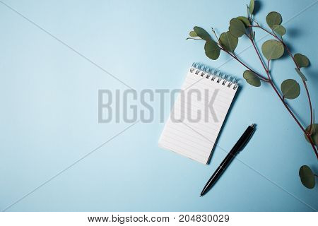Notepad with pen and eucalyptus branch on a blue background