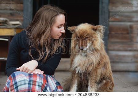European girl and a fluffy shepherd's dog. dog feels guilty and looks down.