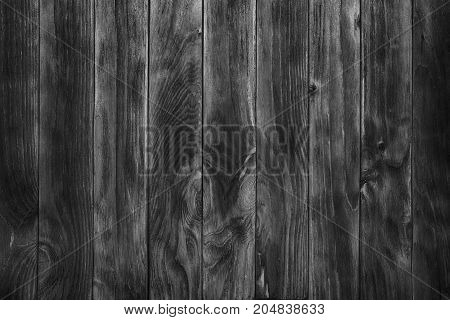 Wood Black Background Texture High Quality Closeup