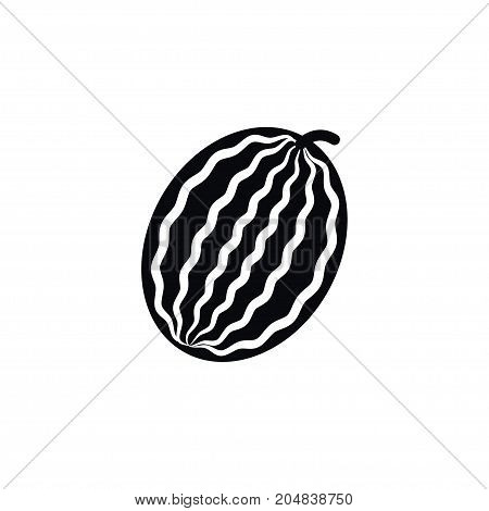 Melon Vector Element Can Be Used For Watermelon, Melon, Muskmelon Design Concept.  Isolated Muskmelon Icon.