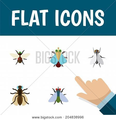 Flat Icon Housefly Set Of Bluebottle, Tiny, Fly And Other Vector Objects