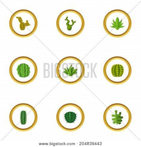 Types of cactus icons set. Cartoon style set of 9 types of cactus vector icons for web design