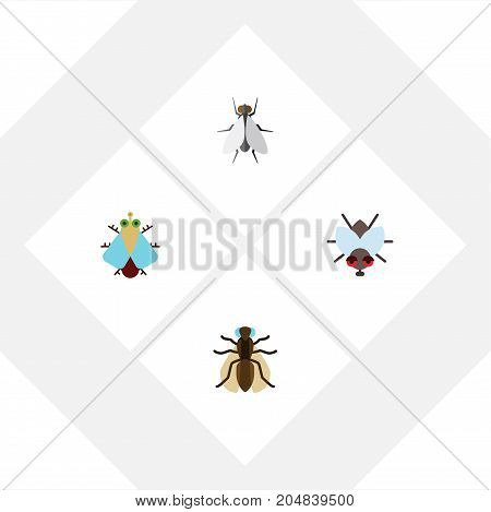Flat Icon Fly Set Of Buzz, Hum, Tiny And Other Vector Objects
