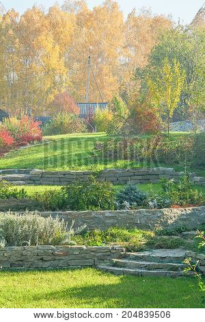 Beautiful autumn landscape with green lawns retaining walls flower beds and a fragment of an alpine slide on the background of yellow leaves of birch trees on a sunny October day