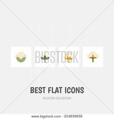 Flat Icon Fiber Set Of Flower, Fluffy, Fiber And Other Vector Objects