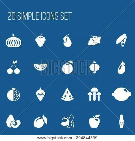 Set Of 20 Editable Berry Icons. Includes Symbols Such As Grape, Garnet, Apricot And More