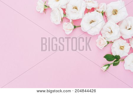 Floral composition made of white roses flowers on pink background. Flat lay, top view. Flowers background.
