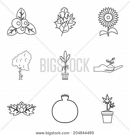 Growing in garden icons set. Outline set of 9 growing in garden vector icons for web isolated on white background