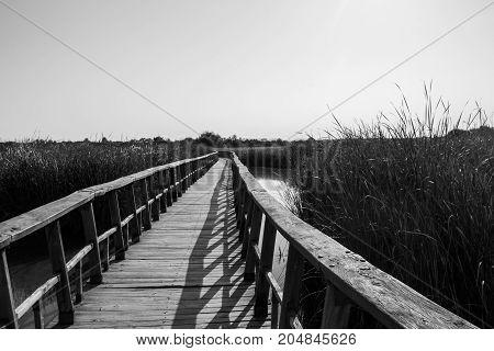 photograph of a wooden footbridge over a field