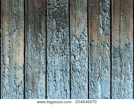 wooden surface of the strips and planks from old peeling paint and cracked