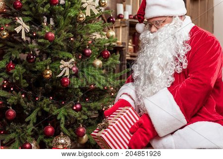 Happy mature Santa Claus is putting present box under the Christmas tree with joy