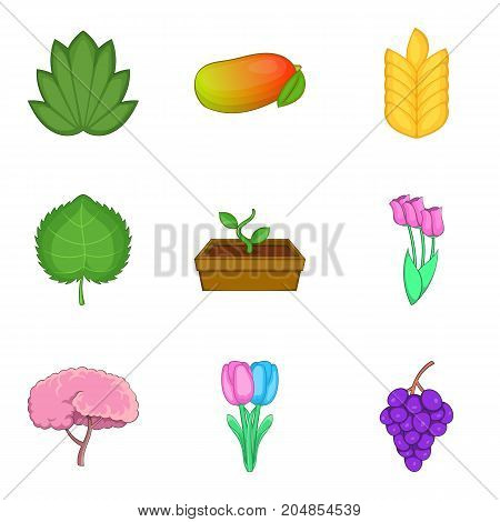 Garden grooming icons set. Cartoon set of 9 garden grooming vector icons for web isolated on white background