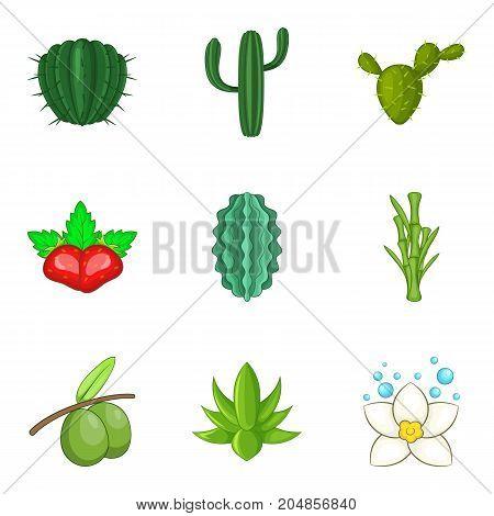 Vegetation icons set. Cartoon set of 9 vegetation vector icons for web isolated on white background