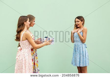 Charming Girls Is Giving Her Beautiful Young Adult Friend A Present, Woman Is Smiling And Wonder.