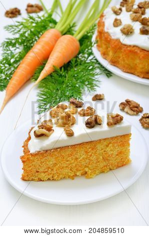 Appetizing piece of carrot cake on white plate
