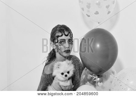 Pretty girl or sexy woman with curly lock of blond hair fashion hairstyle with cute pomeranian dog or puppy pet with fluffy coat and party balloons colorful pink hearts on white background