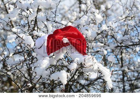 Christmas Landscape With Santa Claus Cap
