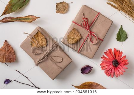 Autumn Background With Two Gifts