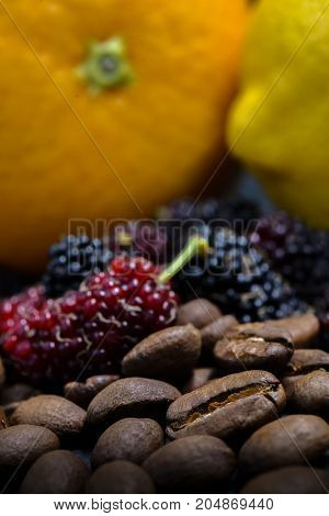 Coffee Bean And Berry Orange