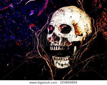 In front of human skull buried in the soil with the roots of the tree on the side. The skull has dirt attached to the skull.concept of death and Halloween