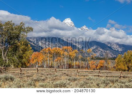 the scenic landscape in the Tetons in fall