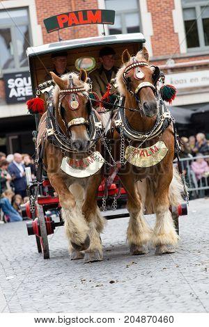 Heavy Horses Parade Lennik