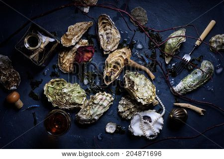 Raw Oysters With Wine Arranged On  Dark Background.