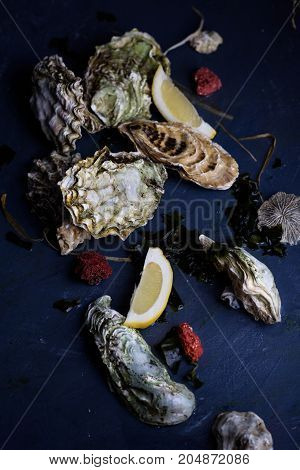 Assortment of oysters close up. Delicatessen gourmet.