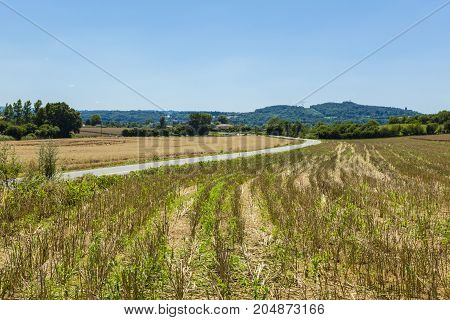 Image of a French rural road between the fields