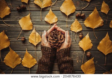 Top view woman holding a cone on hands. Wooden table with ash leaves and acorn.Vintage toned photo.Autumn mood concept