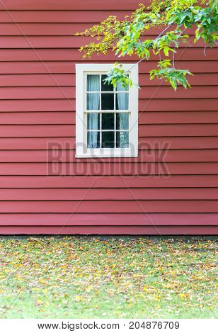 Red painted house wall with white wooden window seen from outside tree branch and autumn leaves on grass