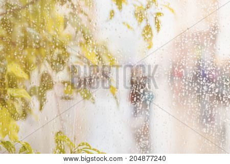 Yellow leaves of the tree. View from the window with rain drops on city street, blurred street bokeh. Concept of autumn weather, seasons, modern city. Place for text, for abstract background
