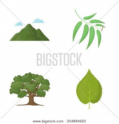 Mountain, cloud, tree, branch, leaf.Forest set collection icons in cartoon style vector symbol stock illustration .