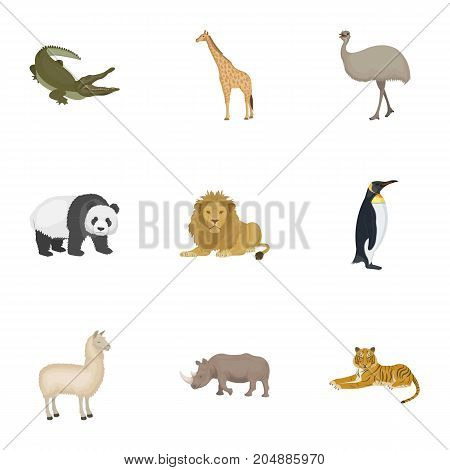 Ostrich emu, crocodile, giraffe, tiger, penguin and other wild animals. Artiodactyla, mammalian predators and animals set collection icons in cartoon style vector symbol stock illustration .
