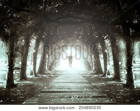 Business man standing at the end of footpath and finding the exit sunlight in dark mystery forest. Success and discover concept.