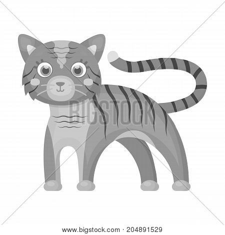 Tiger, single icon in monochrome style.Tiger, vector symbol stock illustration .