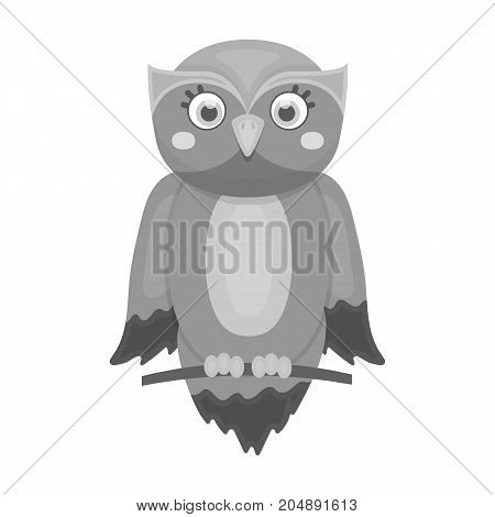 Owl, single icon in monochrome style.Owl, vector symbol stock illustration .