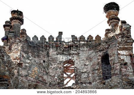 Old ruined castle with a steed nest on the tower.
