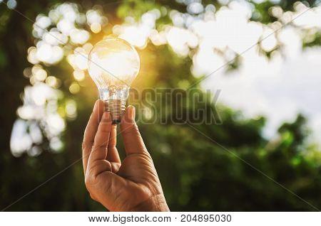 idea solar energy in nature hand holding light bulb concept