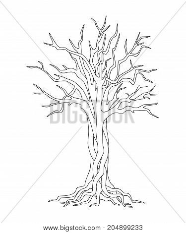 Black and white outline illustration with Isolated tree for kids and adult coloring book album tutorials. Print for home art decorate wall design for logo. eps 10