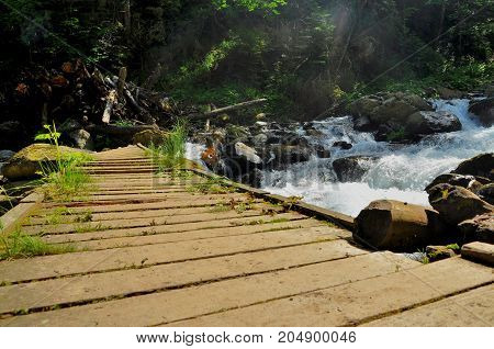 Wooden bridge over a mountain stream Carpathian Mountains
