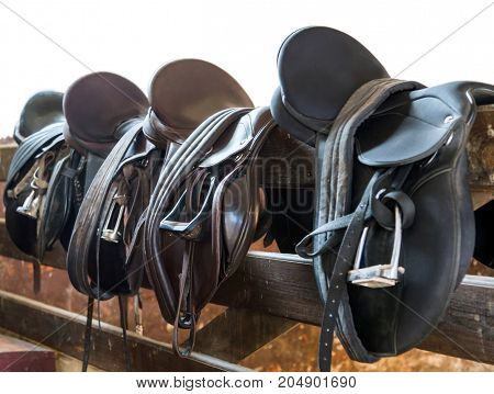 Leather Saddles Isolated On White Background
