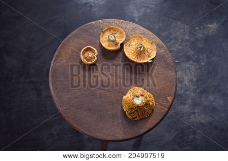 Still-life with edible mushrooms Lactarius furminosus on round vintage wooden table