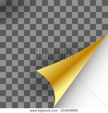 Paper Gold Page Curl with Shadow on Checkered Background