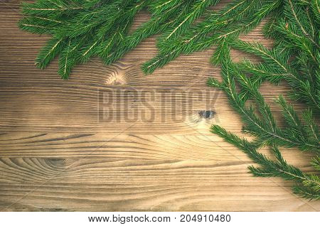 Christmas decoration fir tree branches on burnt wood background with copy space.
